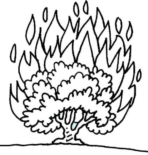 25 Best Ideas About Burning Bush Craft On Pinterest Coloring Pages For Preschool Moses And The Burning Bush