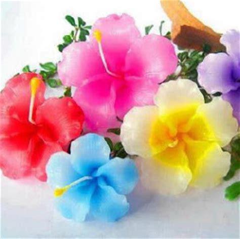 wallpaper bunga warna warni bergerak kumpulan gambar bunga warna warni kumpulan gambar gambar