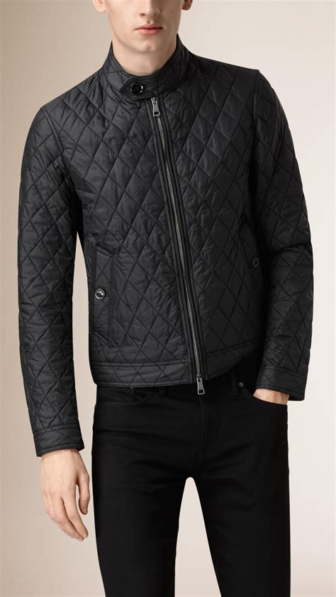 burberry quilted harrington jacket in black for