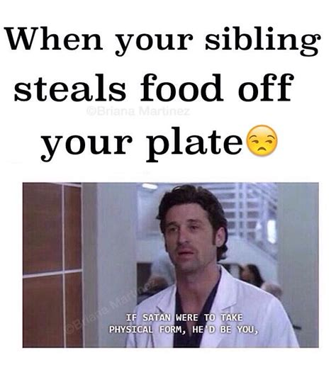 sibling memes best 25 siblings ideas on siblings