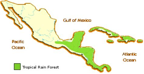 america rainforest map biomes project on emaze