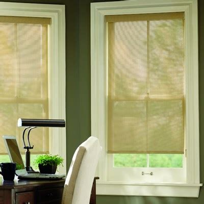 home decorators blinds home depot light filtering roller shade thehomedepot