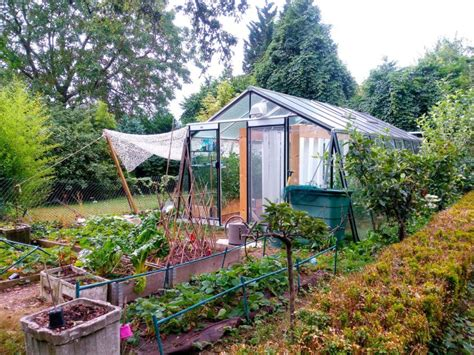 backyard aquaponics greenhouse solar powered aquaponic greenhouses grow up to 880 lbs of