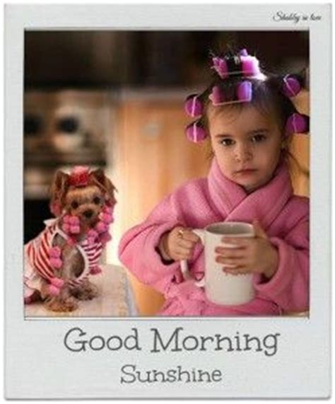 Cute Good Morning Meme - cute good morning memes 1 wallpapers instagram funny