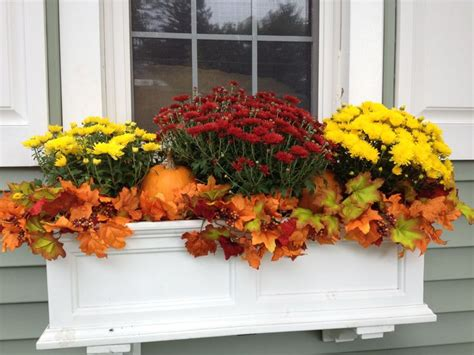 Fall Planter Box Ideas 25 best ideas about fall window boxes on fall