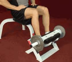tibia machine tibia dorsi calf machine