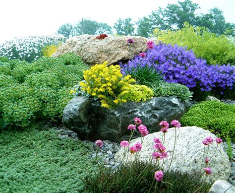 rock valley garden center by valleybrook gardens america s leading