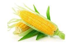 Harga Mesin Pemipil Jagung Kubota jual jagung harga murah distributor dan toko beli