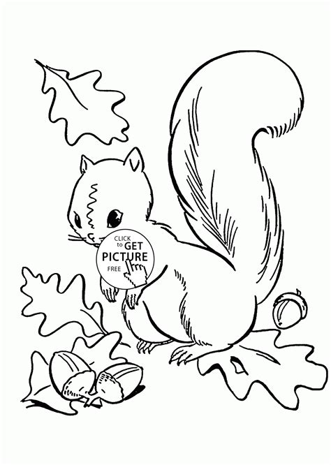 childrens coloring pages fall leaves fall leaves and cute squirrel coloring pages for kids