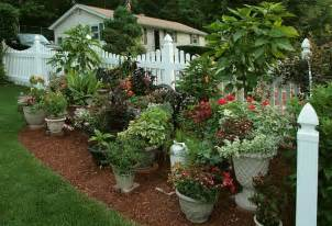 want a stunning container garden signature landscapes