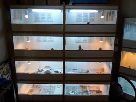 Desk L Wattage by Cbre Mri Help Desk 28 Images 100 Basking L Wattage For