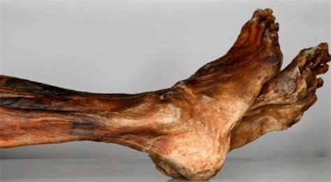otzi tattoo ancient tattoos of 214 tzi and el morro historic mysteries