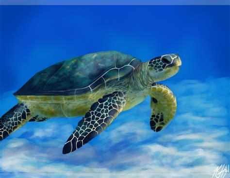 Turtle Sea sea turtle current project inspiration