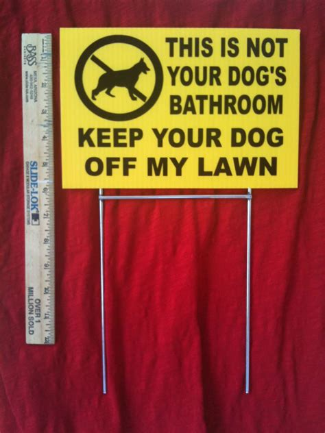 my dog keeps going to the bathroom in the house no dog poop this is not your dog s bathroom keep your dog