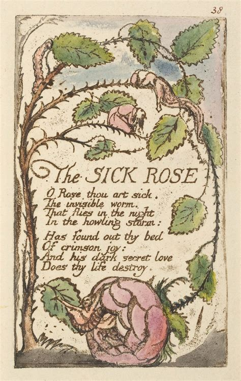theme sick rose william blake bibliodyssey blake illuminations