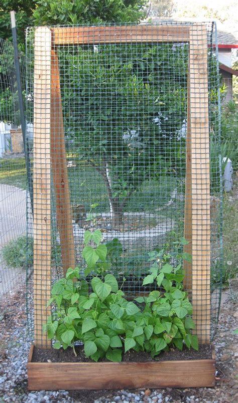 Vegetable Garden Trellis Ideas 25 Best Ideas About Bean Trellis On Growing Runner Beans Cucumber Trellis And
