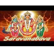 Lord Subramanya Swamy Songs Kanda Shasti Kavasam Bhakti