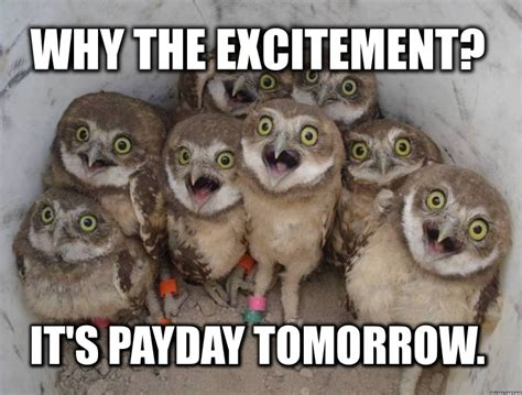 Pay Day Meme - payday quotes squirrel quotesgram