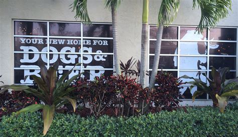 house of dog boca raton house of dog boca raton great kosher restaurants