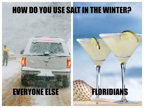 Florida Winter Meme - the 10 best florida winter memes i love south florida