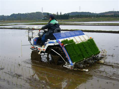 Planter Machine by File Rice Planting Machine 2 Katori City Japan Jpg