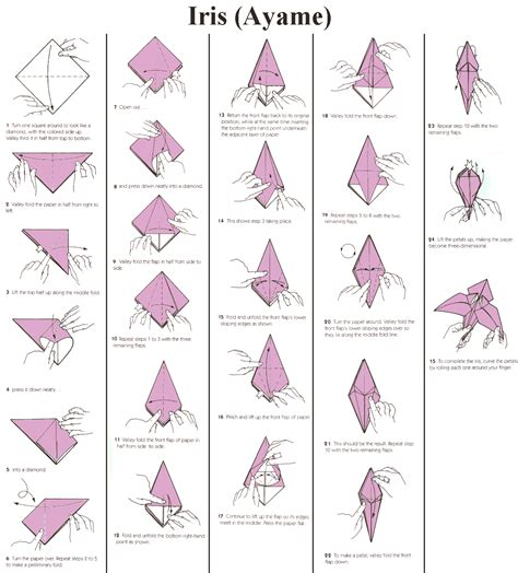 How To Make A Origami Iris - wish hana no monogatari origami