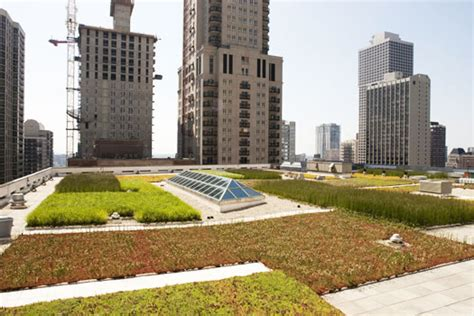 green roof garden by hoerr schaudt landscape architects is
