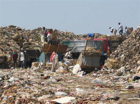 Lingkungan Sehat lingkungan sehat dan tidak sehat serta gambarnya jasa