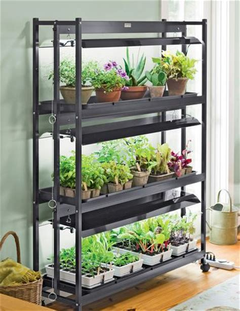 Indoor Vegetable Garden Tips Starting Vegetable Gardens Starting Indoor Vegetable Garden