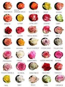 tarım siteniz g 252 l 199 eşitleri rose types