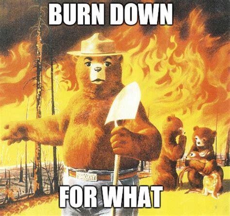 Smokey The Bear Meme - i just found smokey s new slogan the meta picture