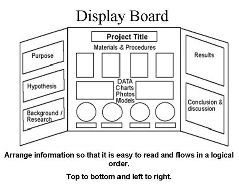 layout for science exhibition 1000 images about trifold on pinterest science fair