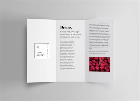 3 Panel Brochure Template by 3 Panel Brochure Mockup