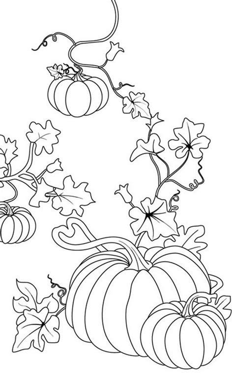 autumn pumpkin coloring pages pumpkins pumpkins coloring page to color pinterest