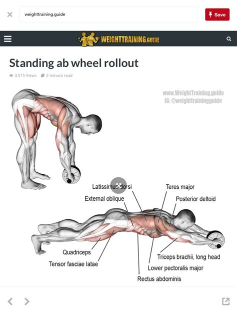 25 best ideas about exercise chart on weight lifting chart build and
