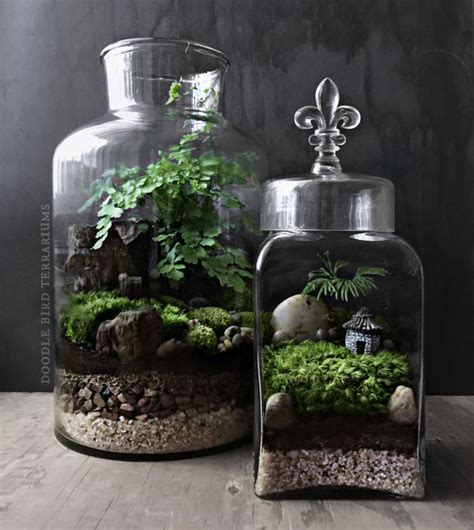 miniature plants for sale woodland terrarium garden with miniature house and by