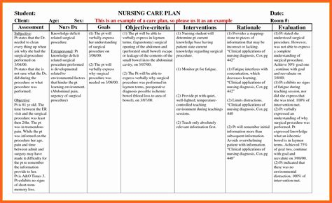Care Plan Template Elderly Document Sle Daily Care Plan For Elderly Template