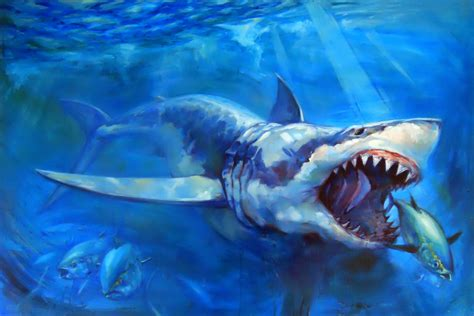 shark painting pin by weddell on shark week