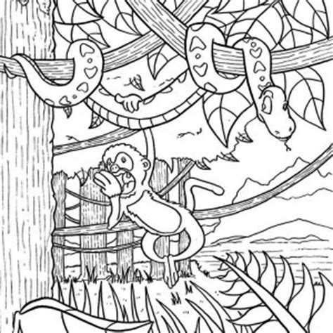 map amazon rainforest coloring pages coloring pages