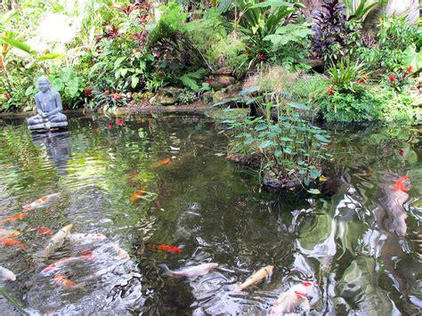 Koi Garden by Koi Garden By Loretta Luglio