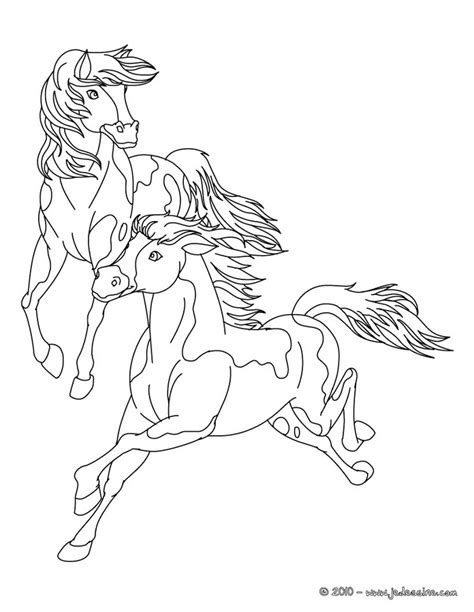 Draft Horse Coloring Pages Coloring Pages Draft Coloring Pages