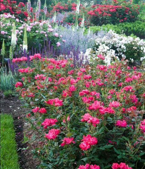 Créer Un Jardin Contemporain by Cagne Salon Inspiration