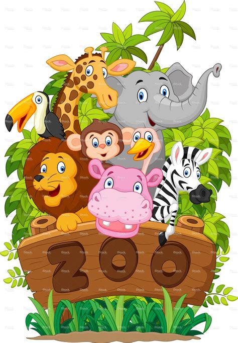 let s learn about jungle animals letã s learn about animals books lets guess zoo animals preschool whiteboard drawing