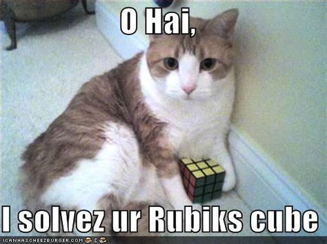I Can Has Cheezburger Meme - jasmine s blog i can has rubik s cubes