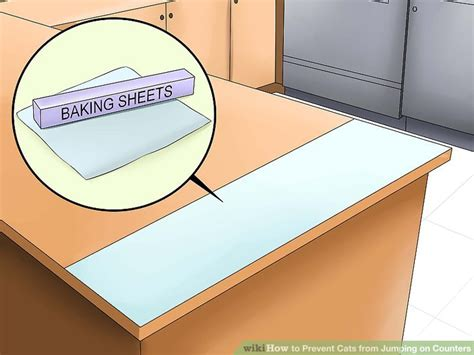 how to stop your cat jumping on counters and tables 3 ways to prevent cats from jumping on counters wikihow