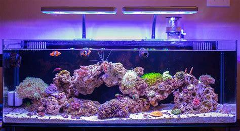nano reef light fixtures cncreef nano diy led fixture lighting forum nano reef