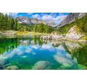 Image Slovenia Triglav National Park Nature Spruce