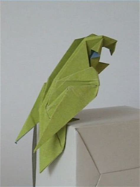 Complex Origami - the origami forum view topic complex origami parrots