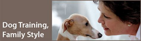 sacramento spca dogs sacramento spca behavior handouts breeds picture