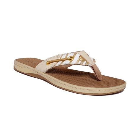 www sandals sperry top sider womens seafish sandals in gold